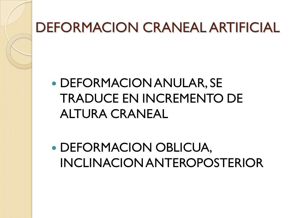 DEFORMACION CRANEAL ARTIFICIAL DEFORMACION ANULAR, SE TRADUCE EN INCREMENTO DE ALTURA CRANEAL DEFORMACION OBLICUA, INCLINACION ANTEROPOSTERIOR