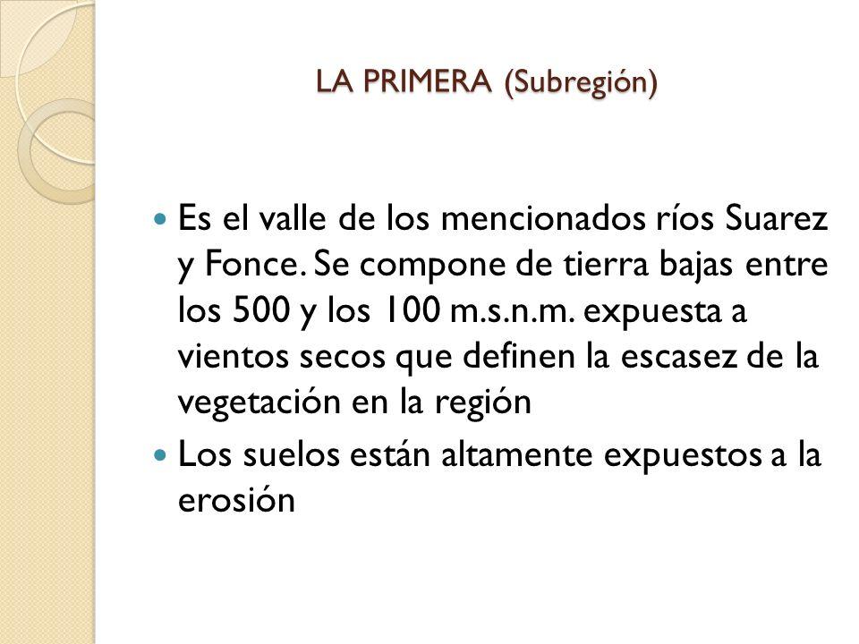 LA PRIMERA (Subregión) Es el valle de los mencionados ríos Suarez y Fonce. Se compone de tierra bajas entre los 500 y los 100 m.s.n.m. expuesta a vien