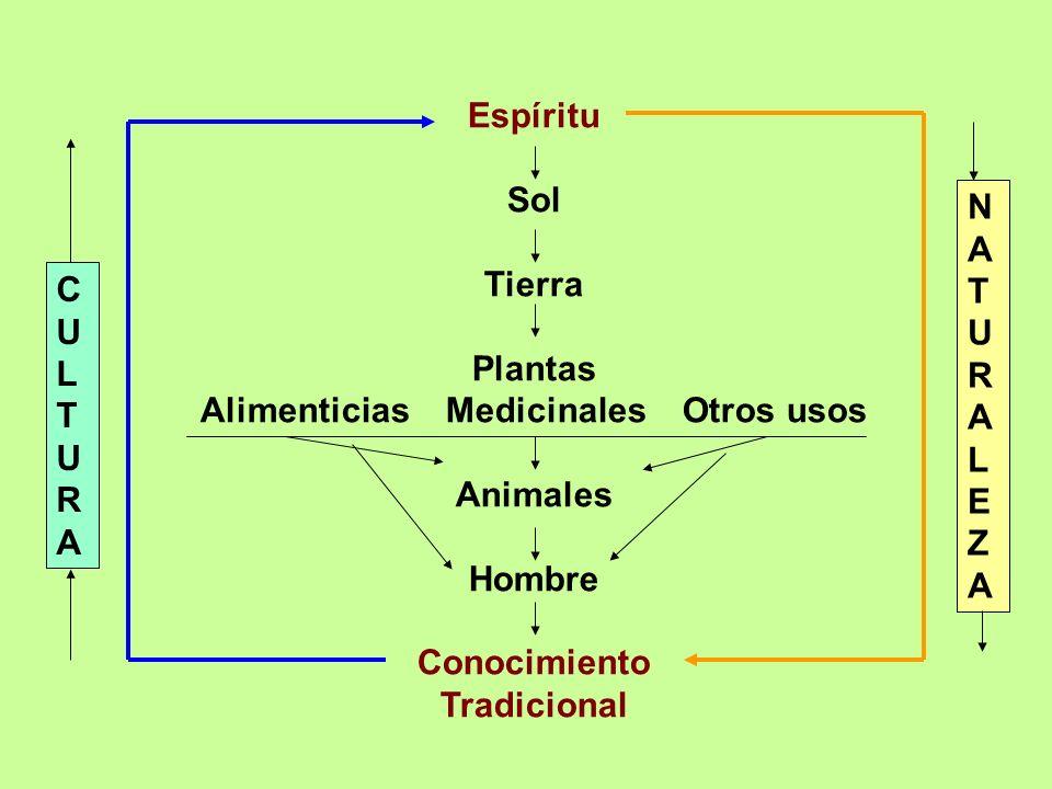 Espíritu Sol Tierra Plantas Alimenticias Medicinales Otros usos Animales Hombre Conocimiento Tradicional NATURALEZANATURALEZA CULTURACULTURA
