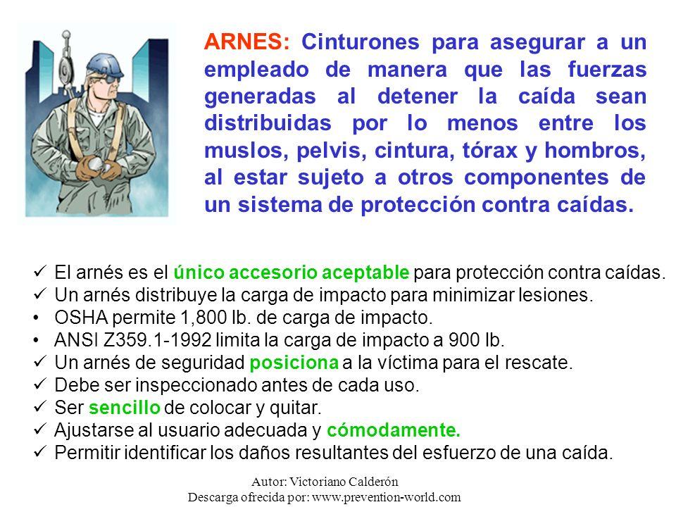 Autor: Victoriano Calderón Descarga ofrecida por: www.prevention-world.com ARNES: Cinturones para asegurar a un empleado de manera que las fuerzas gen