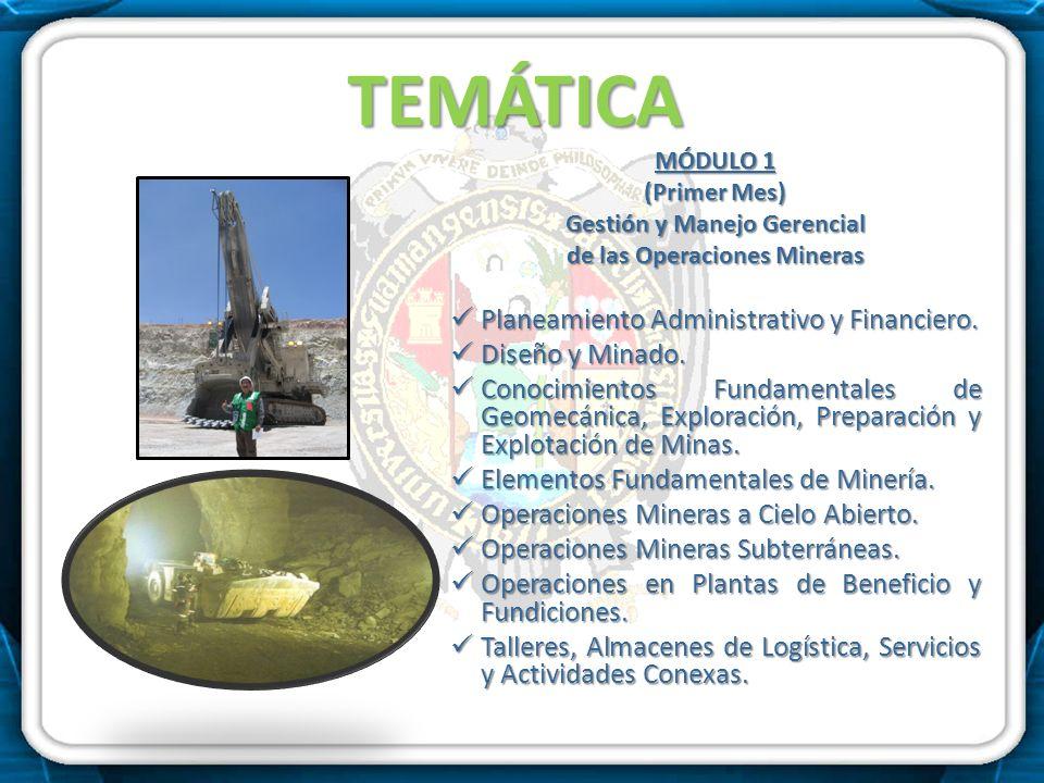 TEMÁTICA MÓDULO 1 (Primer Mes) Gestión y Manejo Gerencial de las Operaciones Mineras Planeamiento Administrativo y Financiero. Planeamiento Administra