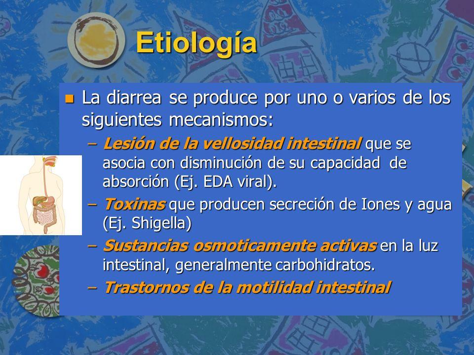 Etiología n La diarrea se produce por uno o varios de los siguientes mecanismos: –Lesión de la vellosidad intestinal que se asocia con disminución de