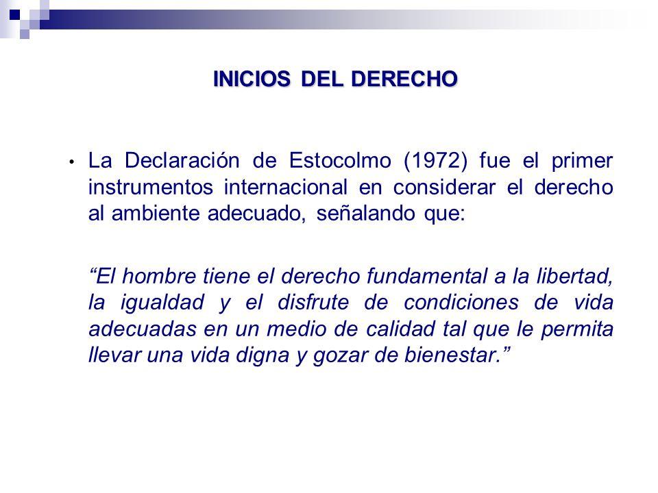 INTERDEPENDENCIA DE LOS DDHH Principio 25 de la Declaración de Río establece que: La paz, el desarrollo y la protección del medio ambiente son interdependientes e inseparables.