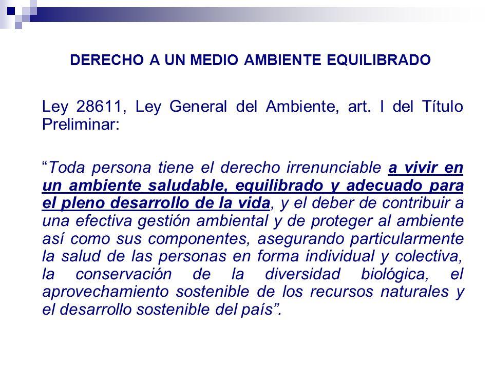 ALCANCES DEL DERECHO A LA PARTICIPACIÓN CIUDADANA EN LA GESTIÓN AMBIENTAL Ley General del Ambiente, artículo 47.2.
