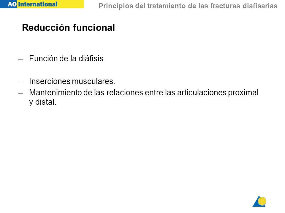 Principios del tratamiento de las fracturas diafisarias Reducción funcional –Función de la diáfisis. –Inserciones musculares. –Mantenimiento de las re