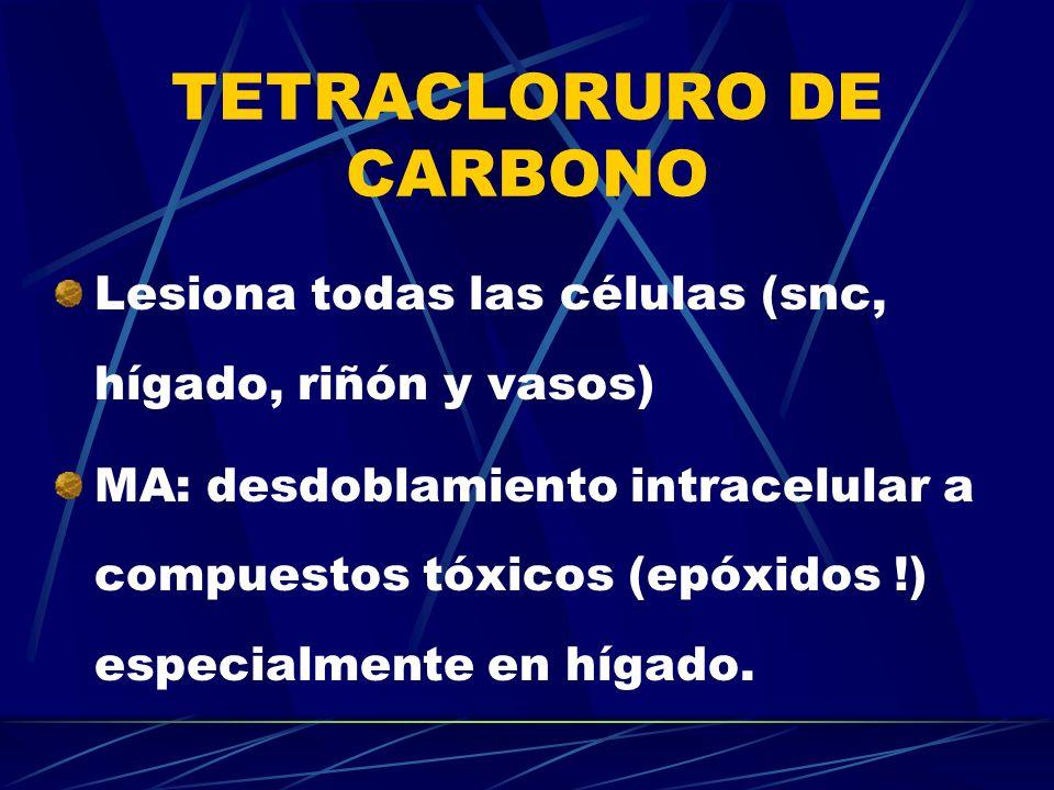 TETRACLORURO DE CARBONO Lesiona todas las células (snc, hígado, riñón y vasos) MA: desdoblamiento intracelular a compuestos tóxicos (epóxidos !) espec