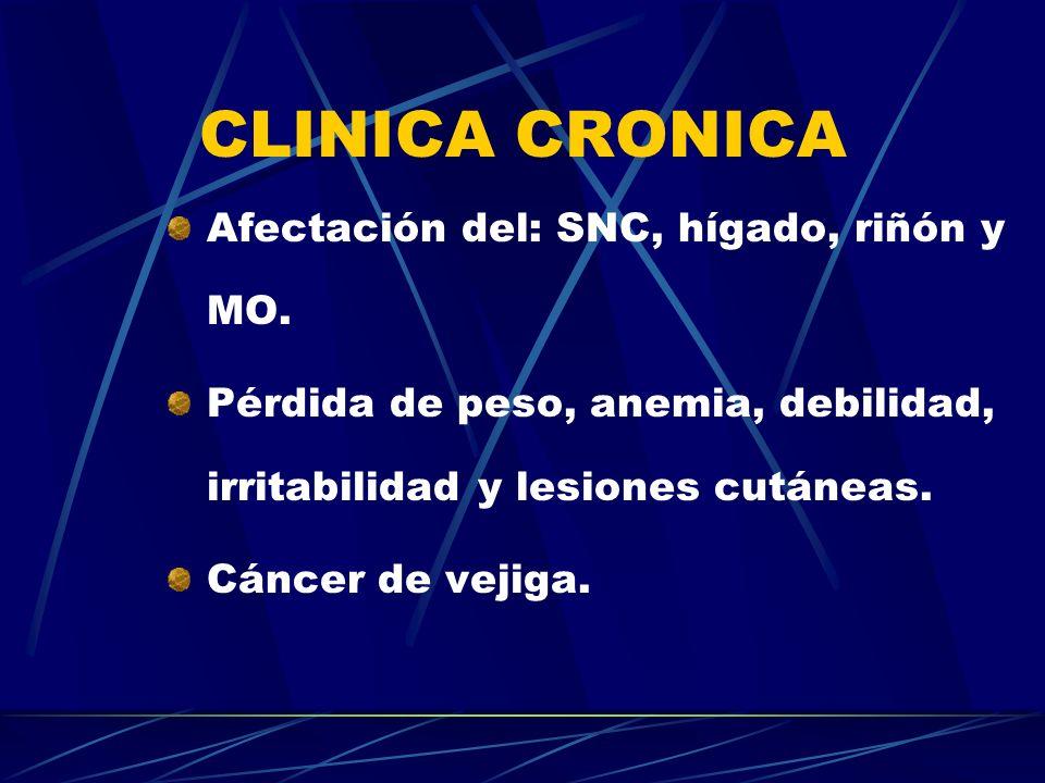 CLINICA CRONICA Afectación del: SNC, hígado, riñón y MO. Pérdida de peso, anemia, debilidad, irritabilidad y lesiones cutáneas. Cáncer de vejiga.