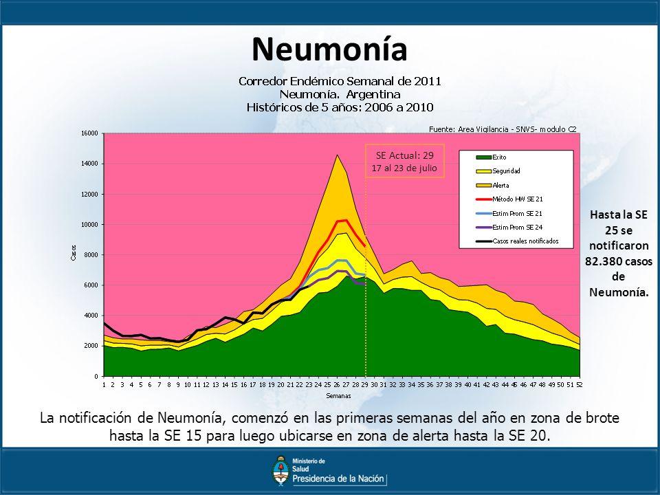 Neumonía La notificación de Neumonía, comenzó en las primeras semanas del año en zona de brote hasta la SE 15 para luego ubicarse en zona de alerta hasta la SE 20.