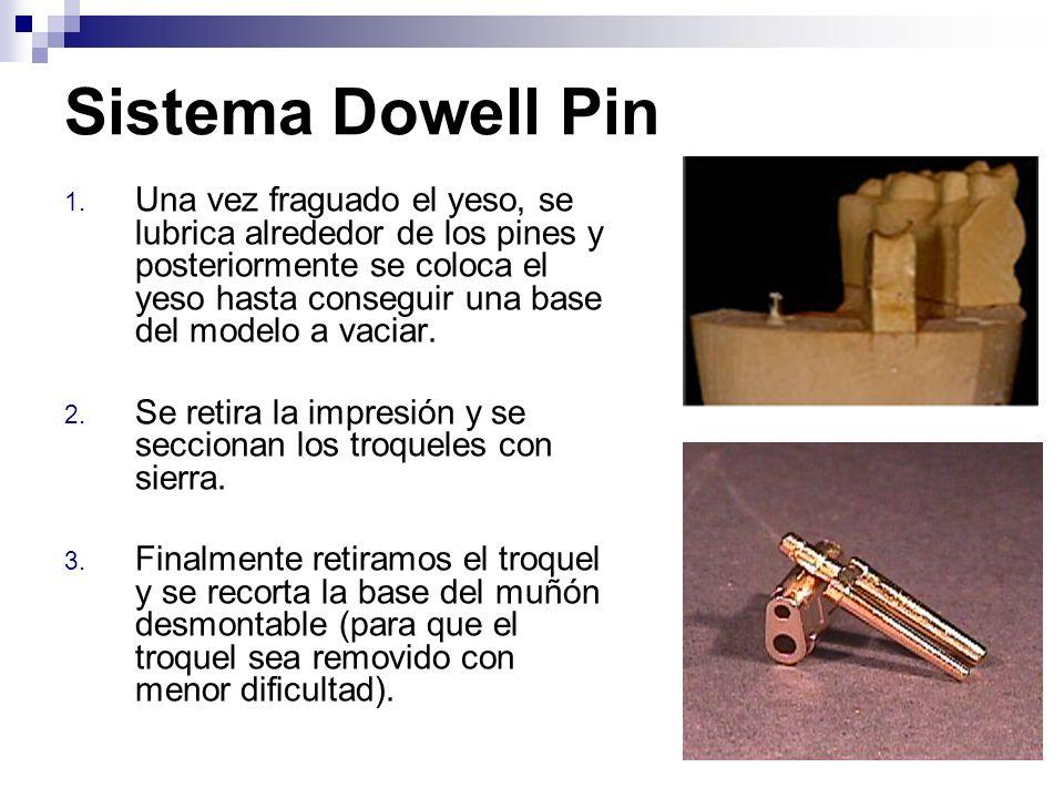 Sistema Dowell Pin 1. Una vez fraguado el yeso, se lubrica alrededor de los pines y posteriormente se coloca el yeso hasta conseguir una base del mode