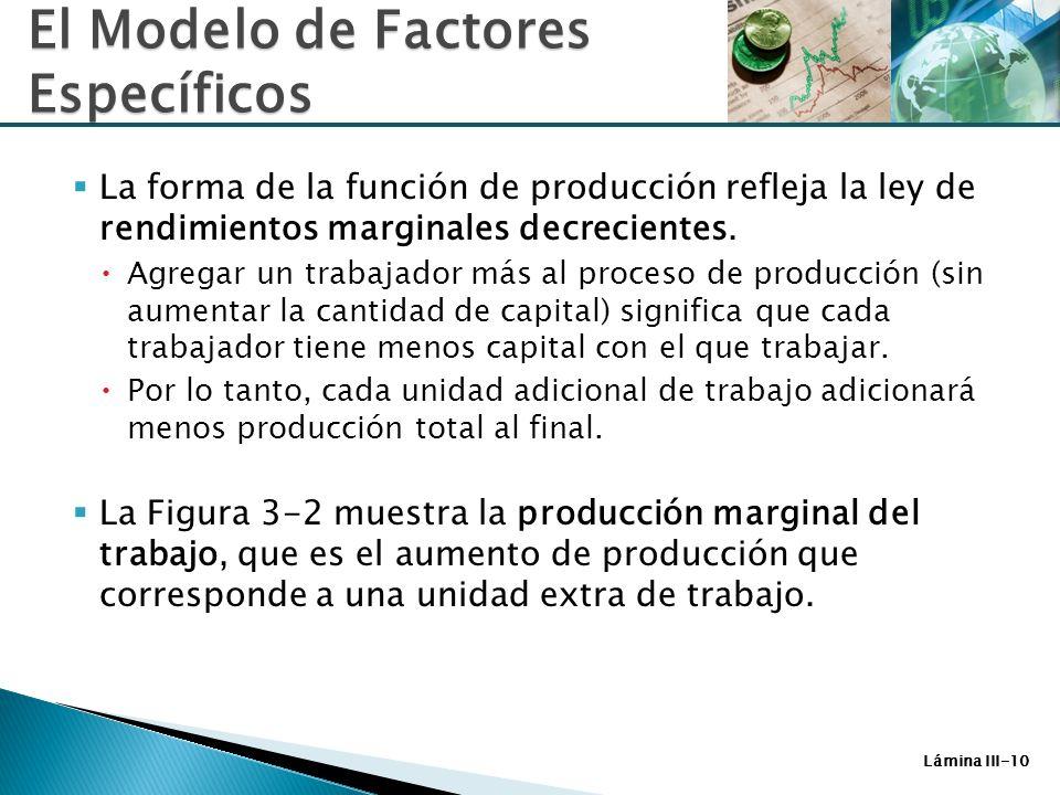 Lámina III-10 La forma de la función de producción refleja la ley de rendimientos marginales decrecientes. Agregar un trabajador más al proceso de pro