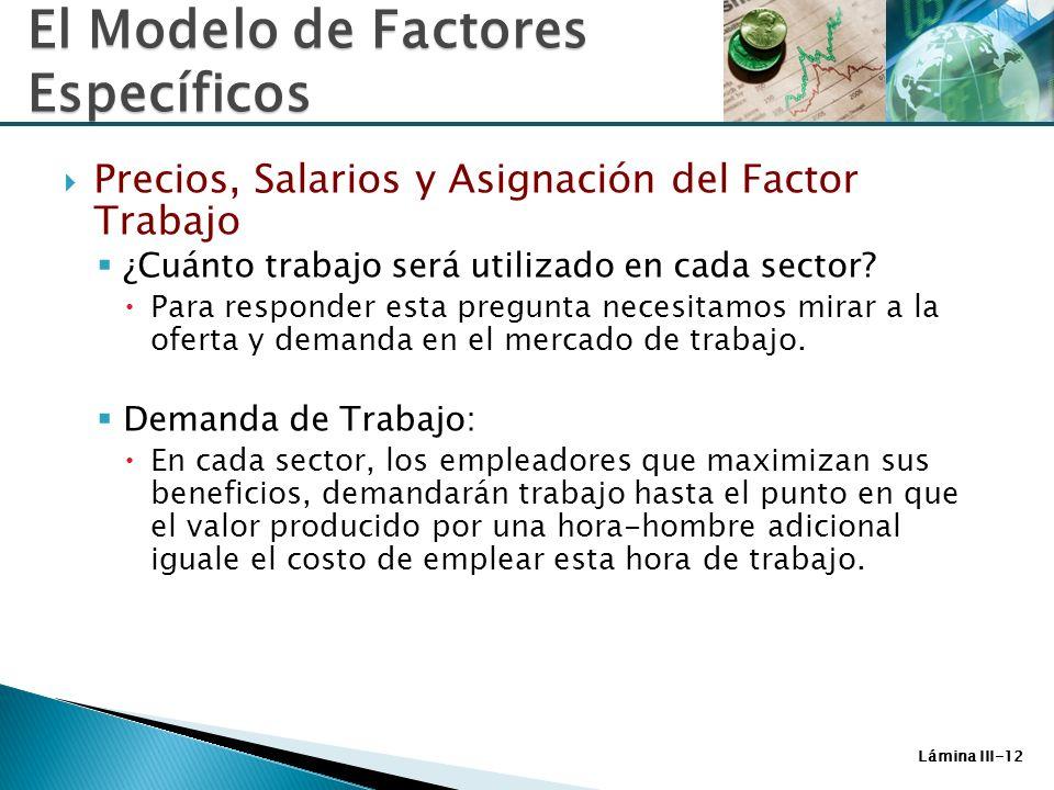 Lámina III-12 Precios, Salarios y Asignación del Factor Trabajo ¿Cuánto trabajo será utilizado en cada sector? Para responder esta pregunta necesitamo