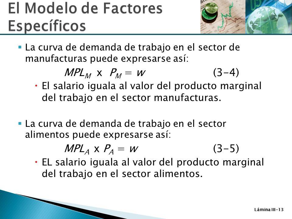 Lámina III-13 La curva de demanda de trabajo en el sector de manufacturas puede expresarse así: MPL M x P M = w (3-4) El salario iguala al valor del p