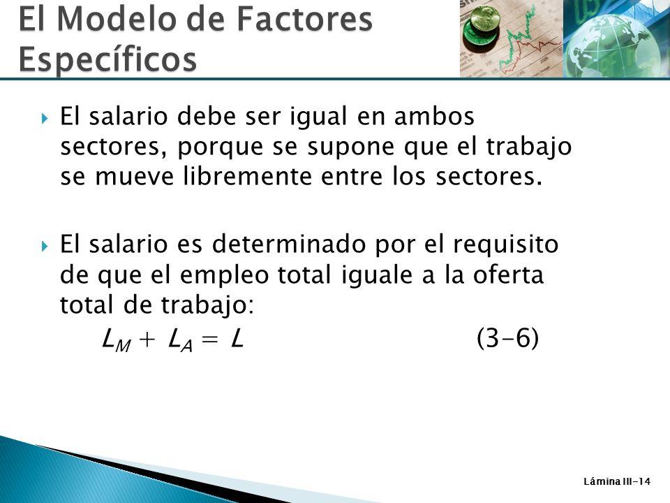 Lámina III-14 El salario debe ser igual en ambos sectores, porque se supone que el trabajo se mueve libremente entre los sectores. El salario es deter