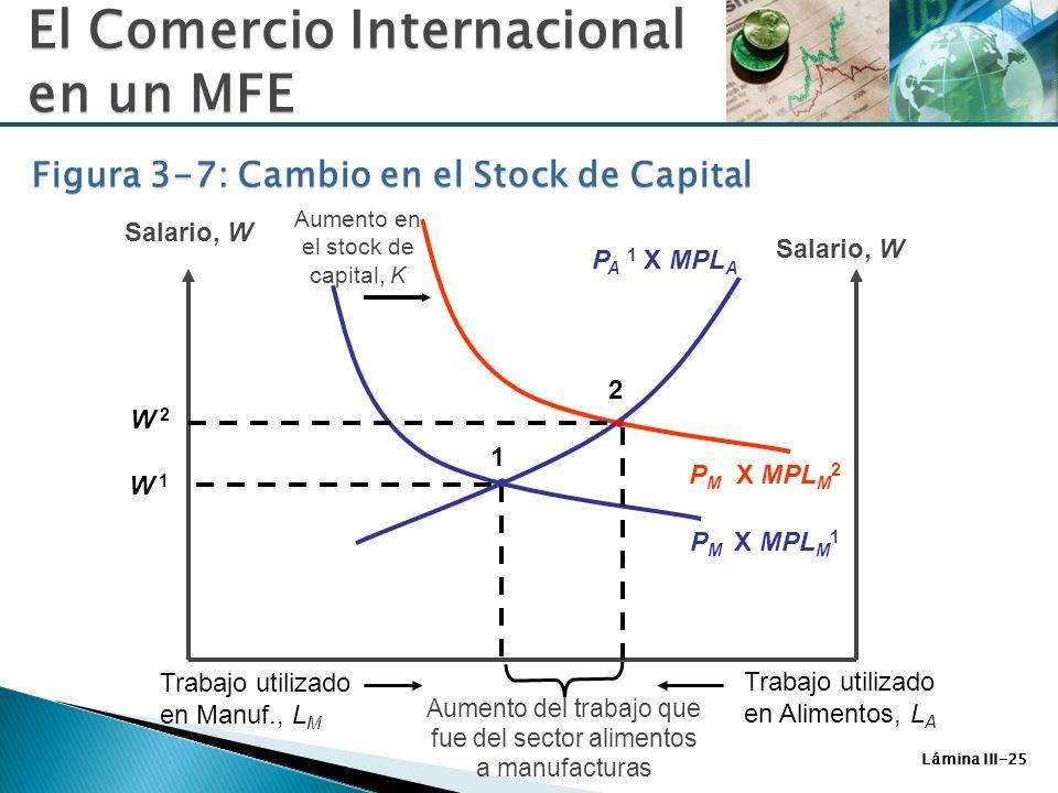 Lámina III-25 El Comercio Internacional en un MFE Figura 3-7: Cambio en el Stock de Capital P M X MPL M 2 P A 1 X MPL A Salario, W P M X MPL M 1 W 1W