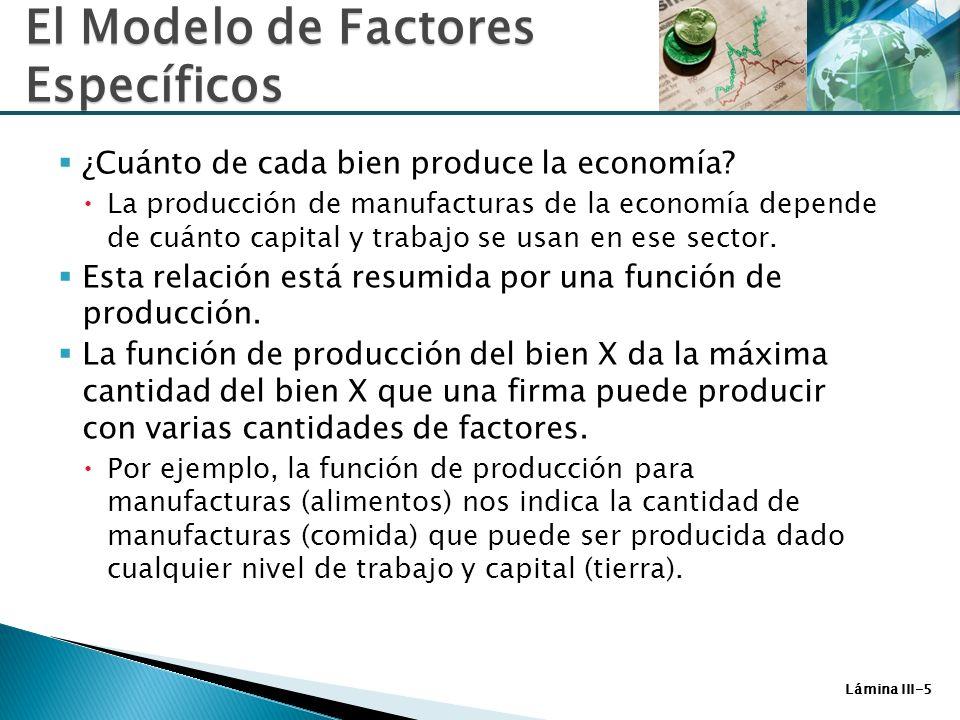 Lámina III-6 La función de producción para manufacturas está dada por: Q M = Q M (K, L M ) (3-1) donde: Q M es la producción de manufacturas K es el stock de capital de la economía L M es la fuerza laboral empleada en manufacturas La función de producción para alimentos está dada por: Q A = Q A (T, L A ) (3-2) donde: Q F es la producción de alimentos T es la oferta de tierra L F es la fuerza laboral empleada en sector alimentos El Modelo de Factores Específicos