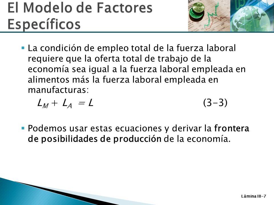 Lámina III-8 Posibilidades de Producción Para analizar la posibilidad de producción de la economía, necesitamos solo preguntar como cambia de composición de producción a medida que cambia el uso del trabajo de un sector a otro.