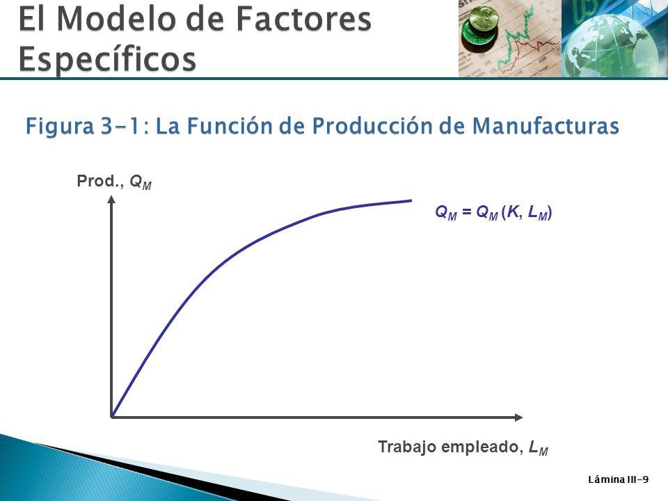 Lámina III-9 Q M = Q M (K, L M ) Trabajo empleado, L M Prod., Q M El Modelo de Factores Específicos Figura 3-1: La Función de Producción de Manufactur