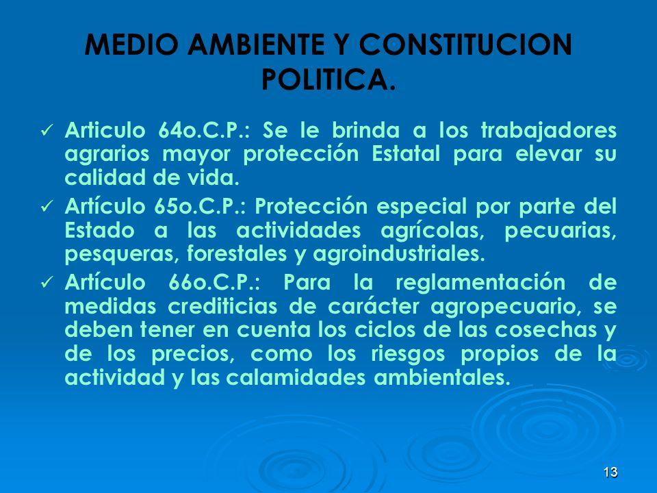 13 MEDIO AMBIENTE Y CONSTITUCION POLITICA. Articulo 64o.C.P.: Se le brinda a los trabajadores agrarios mayor protección Estatal para elevar su calidad