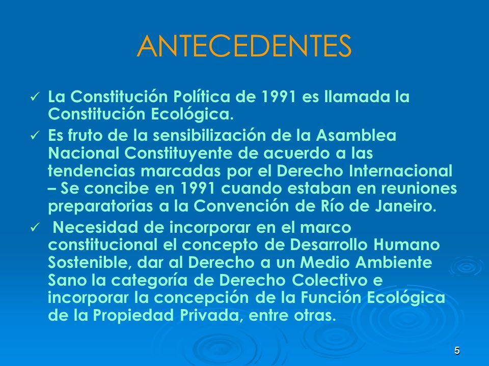 5 ANTECEDENTES La Constitución Política de 1991 es llamada la Constitución Ecológica. Es fruto de la sensibilización de la Asamblea Nacional Constituy
