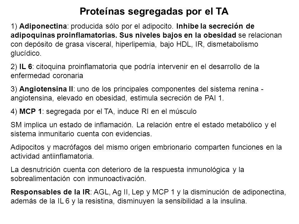 Síntesis y liberación de adipoquinas, continuación: Las adipoquinas que no son producidas unicamente por el adipocito (no adipocito-específicas) inter