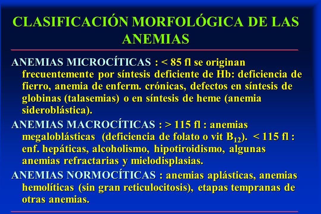 CLASIFICACIÓN MORFOLÓGICA DE LAS ANEMIAS ANEMIAS MICROCÍTICAS : < 85 fl se originan frecuentemente por síntesis deficiente de Hb: deficiencia de fierr