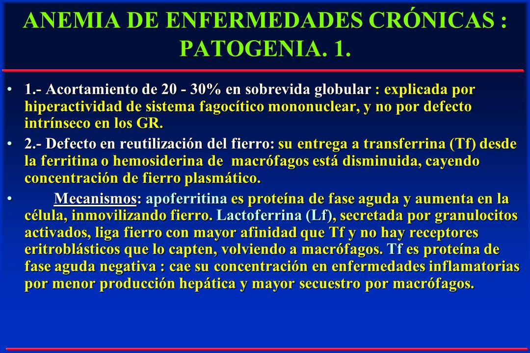 ANEMIA DE ENFERMEDADES CRÓNICAS : PATOGENIA. 1. 1.- Acortamiento de 20 - 30% en sobrevida globular : explicada por hiperactividad de sistema fagocític