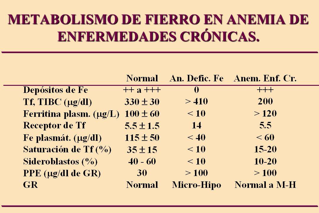 METABOLISMO DE FIERRO EN ANEMIA DE ENFERMEDADES CRÓNICAS.