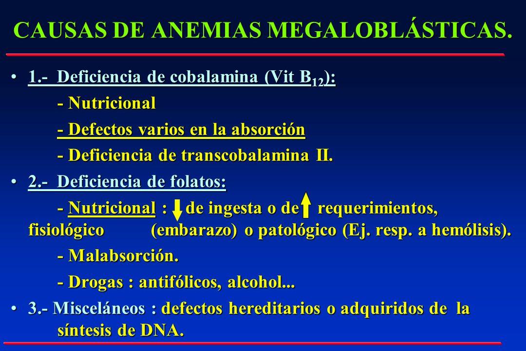 CAUSAS DE ANEMIAS MEGALOBLÁSTICAS. 1.- Deficiencia de cobalamina (Vit B 12 ):1.- Deficiencia de cobalamina (Vit B 12 ): - Nutricional - Defectos vario