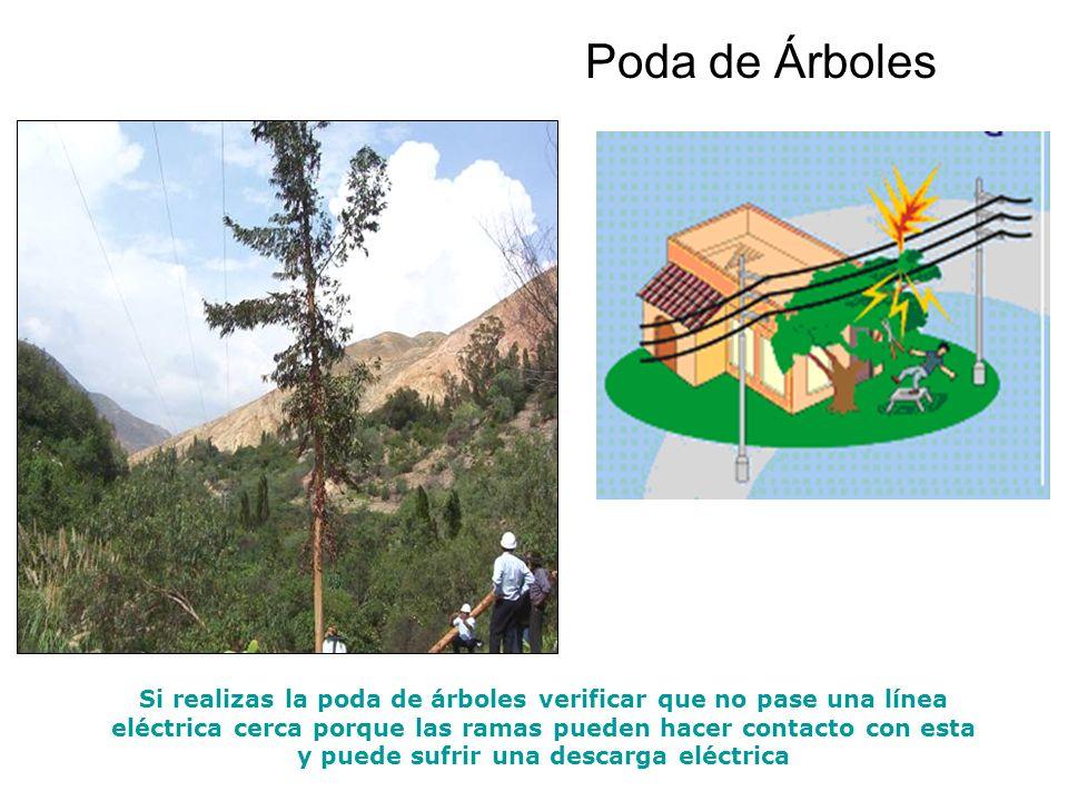 Poda de Árboles Si realizas la poda de árboles verificar que no pase una línea eléctrica cerca porque las ramas pueden hacer contacto con esta y puede sufrir una descarga eléctrica