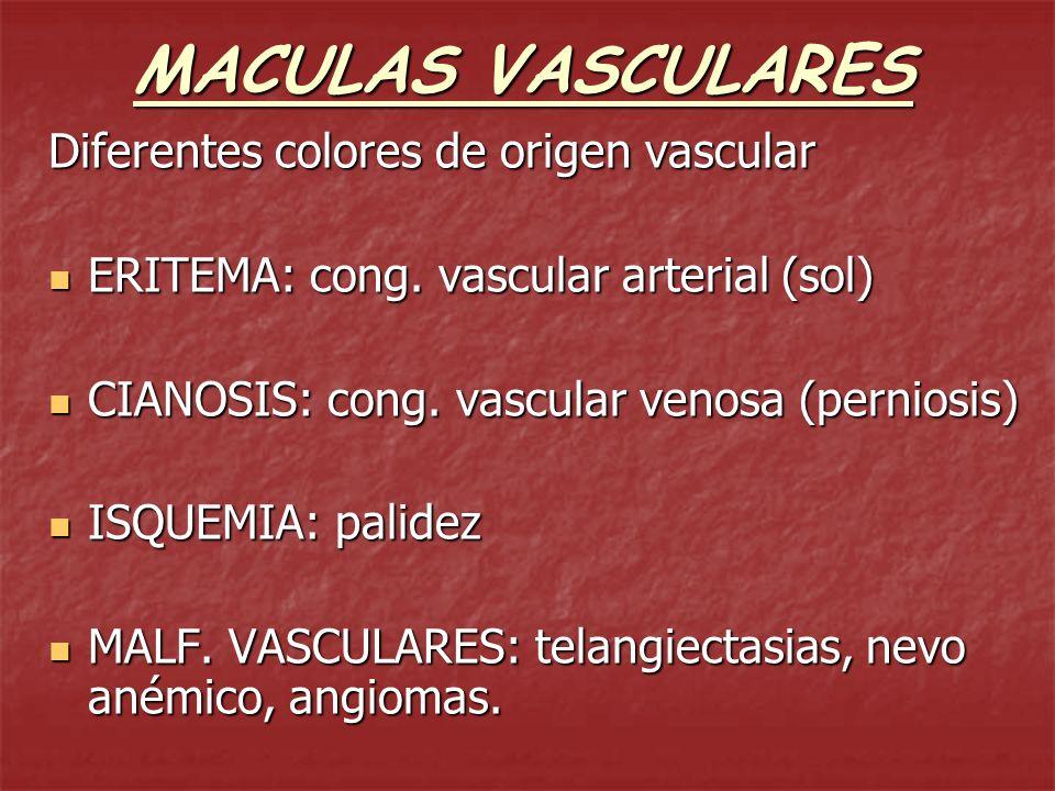 MACULAS VASCULARES Diferentes colores de origen vascular ERITEMA: cong. vascular arterial (sol) ERITEMA: cong. vascular arterial (sol) CIANOSIS: cong.