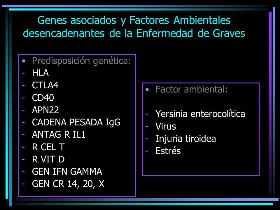 Genes asociados y Factores Ambientales desencadenantes de la Enfermedad de Graves Predisposición genética: -HLA -CTLA4 -CD40 -APN22 -CADENA PESADA IgG