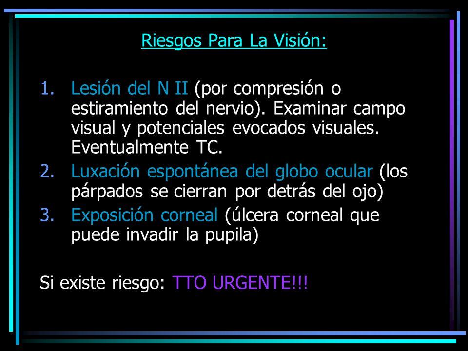 Riesgos Para La Visión: 1.Lesión del N II (por compresión o estiramiento del nervio). Examinar campo visual y potenciales evocados visuales. Eventualm