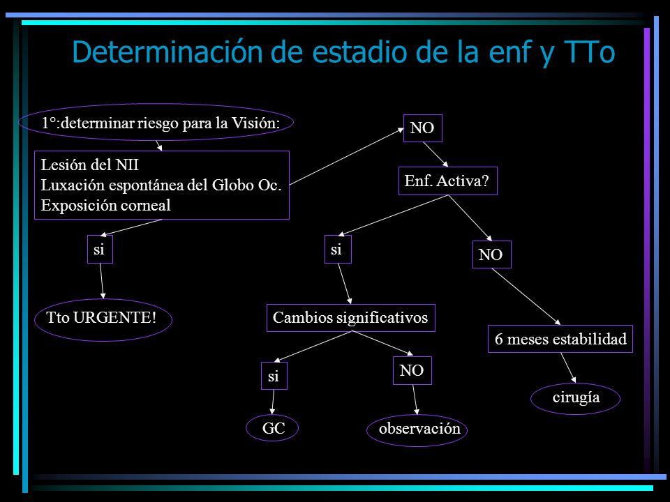 Determinación de estadio de la enf y TTo 1°:determinar riesgo para la Visión: Lesión del NII Luxación espontánea del Globo Oc. Exposición corneal si T