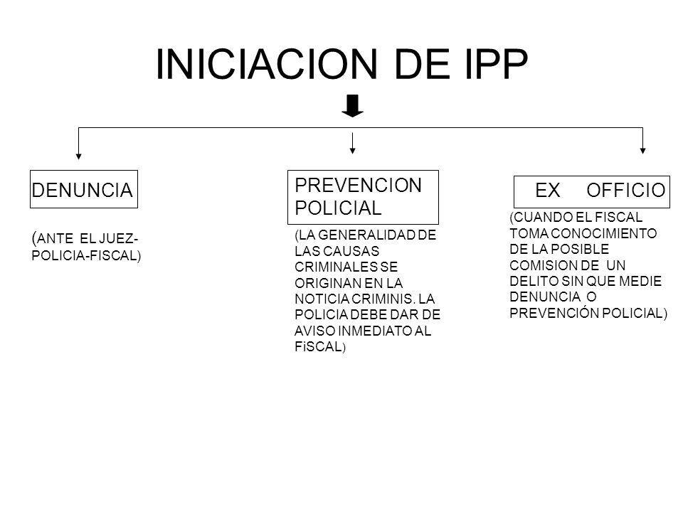INICIACION DE IPP DENUNCIA PREVENCION POLICIAL (LA GENERALIDAD DE LAS CAUSAS CRIMINALES SE ORIGINAN EN LA NOTICIA CRIMINIS.