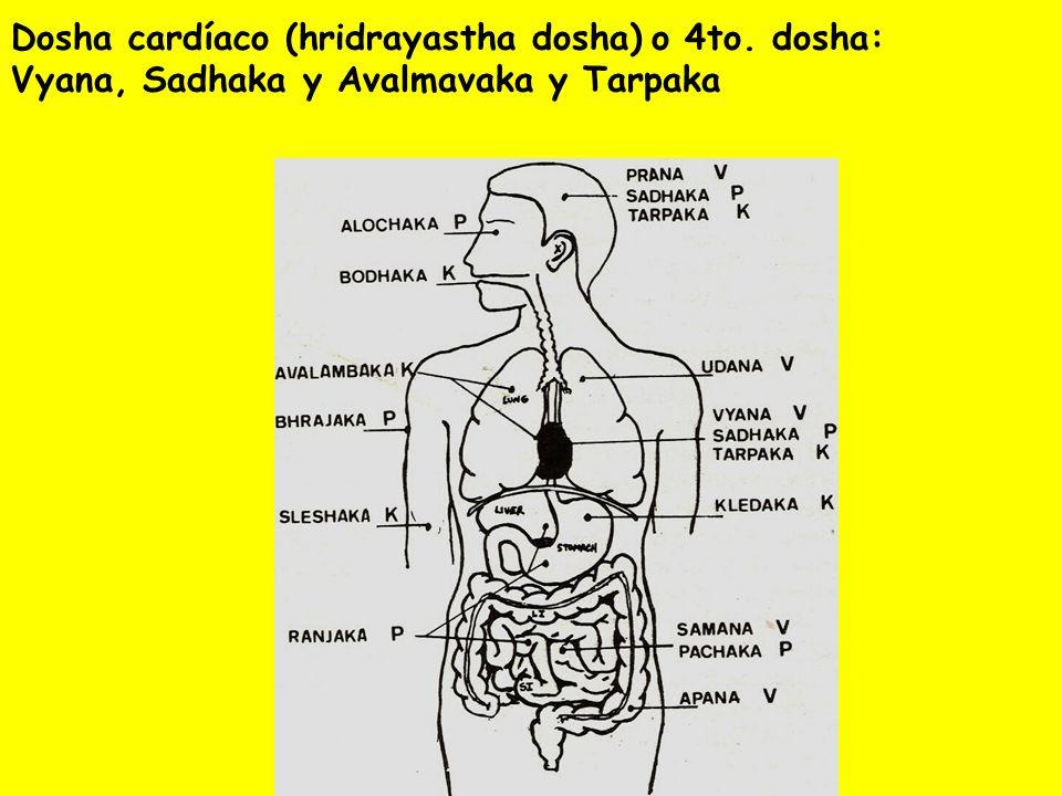 Dosha cardíaco (hridrayastha dosha) o 4to. dosha: Vyana, Sadhaka y Avalmavaka y Tarpaka