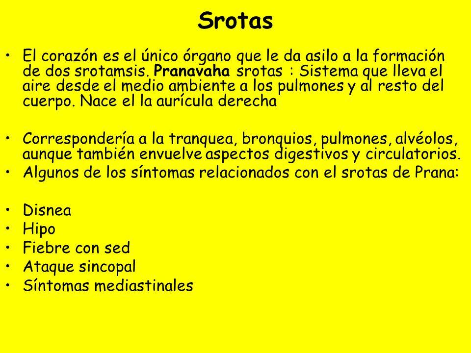 Srotas El corazón es el único órgano que le da asilo a la formación de dos srotamsis.