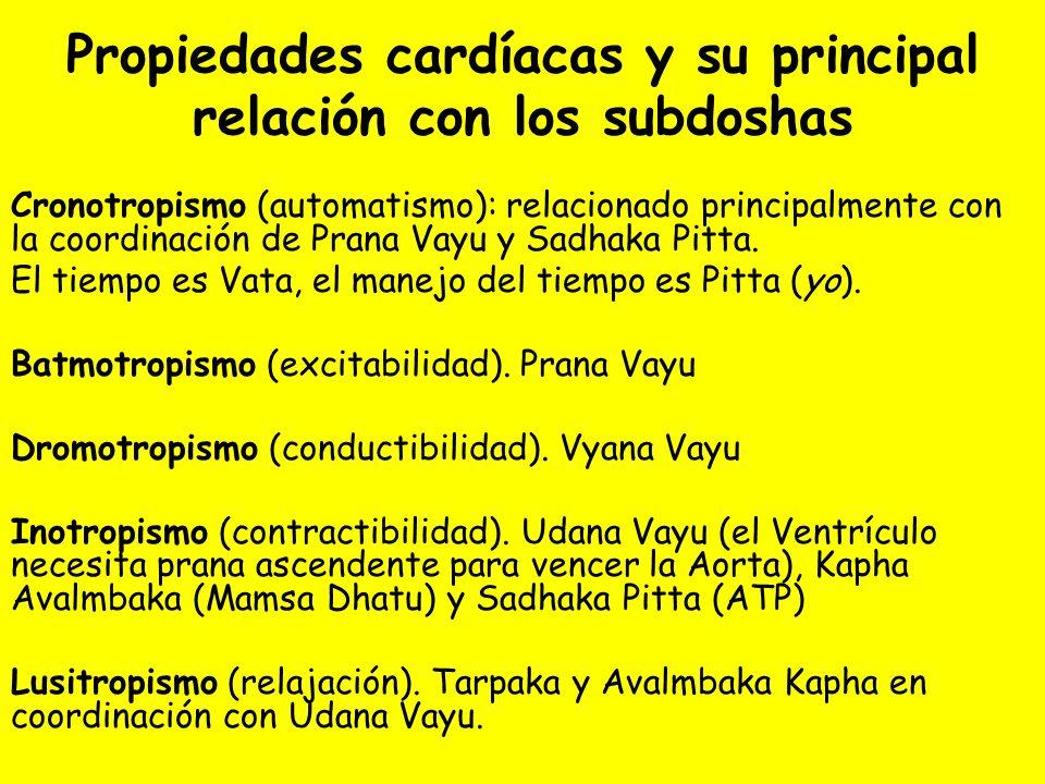 Propiedades cardíacas y su principal relación con los subdoshas Cronotropismo (automatismo): relacionado principalmente con la coordinación de Prana Vayu y Sadhaka Pitta.