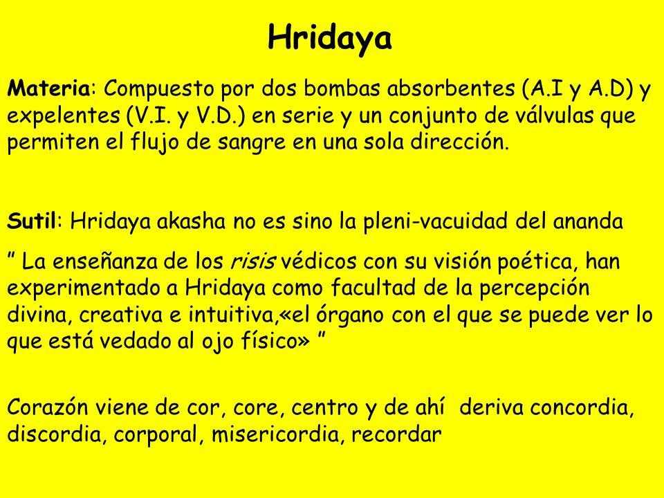 Hridaya Materia: Compuesto por dos bombas absorbentes (A.I y A.D) y expelentes (V.I.
