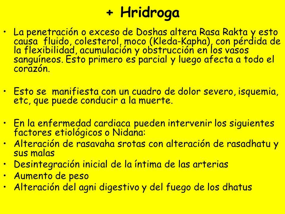 + Hridroga La penetración o exceso de Doshas altera Rasa Rakta y esto causa fluido, colesterol, moco (Kleda-Kapha), con pérdida de la flexibilidad, acumulación y obstrucción en los vasos sanguíneos.