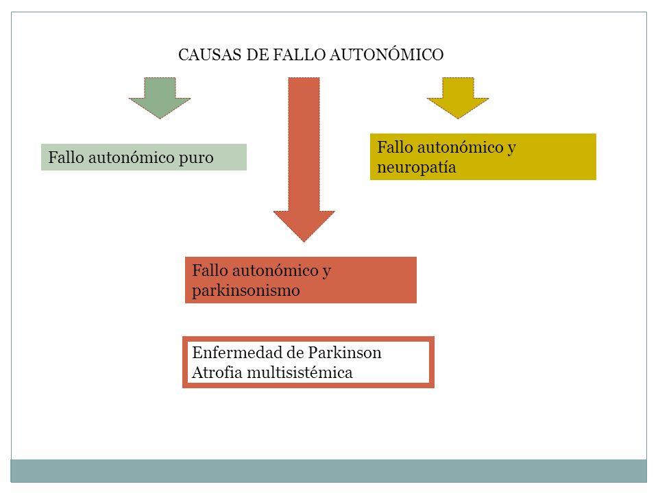 CAUSAS DE FALLO AUTONÓMICO Fallo autonómico puro Fallo autonómico y parkinsonismo Fallo autonómico y neuropatía Enfermedad de Parkinson Atrofia multis