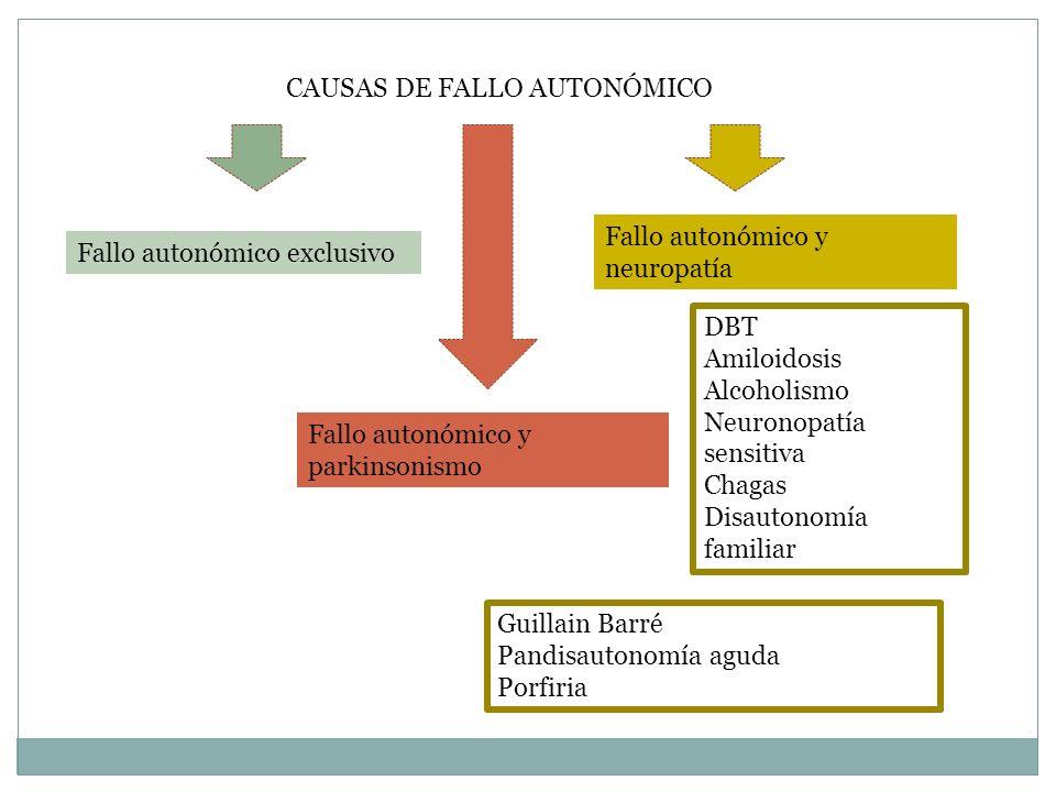 CAUSAS DE FALLO AUTONÓMICO Fallo autonómico exclusivo Fallo autonómico y parkinsonismo Fallo autonómico y neuropatía DBT Amiloidosis Alcoholismo Neuro