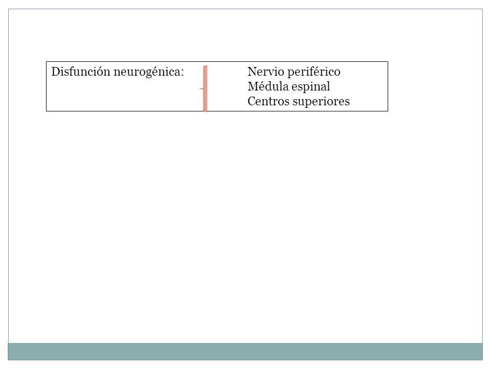 Disfunción neurogénica: Nervio periférico Médula espinal Centros superiores