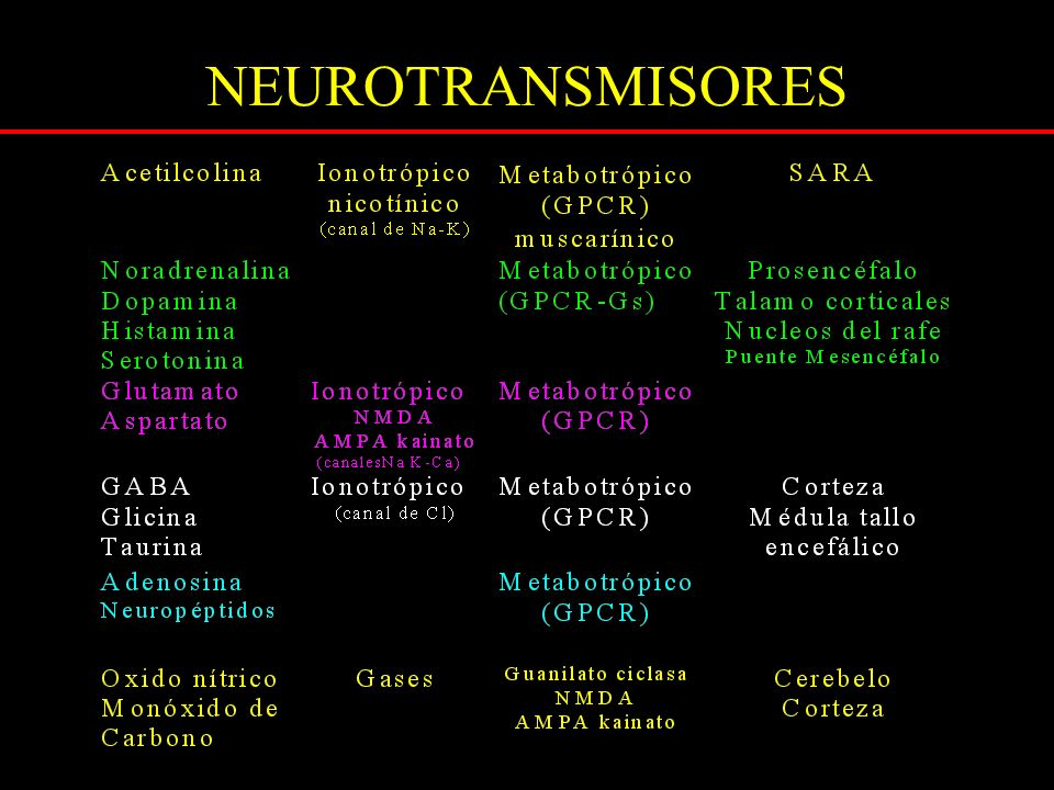 COMA HEPATICO edema cerebral Via de remoción de amonio