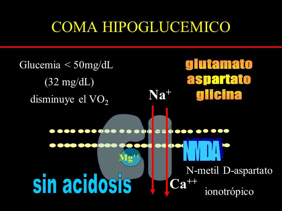 COMA HIPOGLUCEMICO Glucemia < 50mg/dL (32 mg/dL) disminuye el VO 2 N-metil D-aspartato ionotrópico Na + Ca ++ Mg ++
