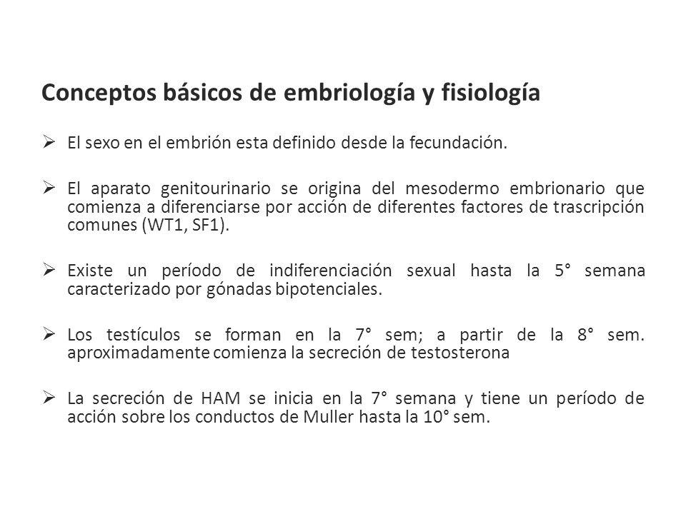 Conceptos básicos de embriología y fisiología El sexo en el embrión esta definido desde la fecundación. El aparato genitourinario se origina del mesod