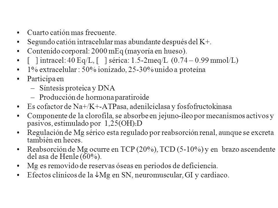 Cuarto catión mas frecuente. Segundo catión intracelular mas abundante después del K+. Contenido corporal: 2000 mEq (mayoría en hueso). [ ] intracel: