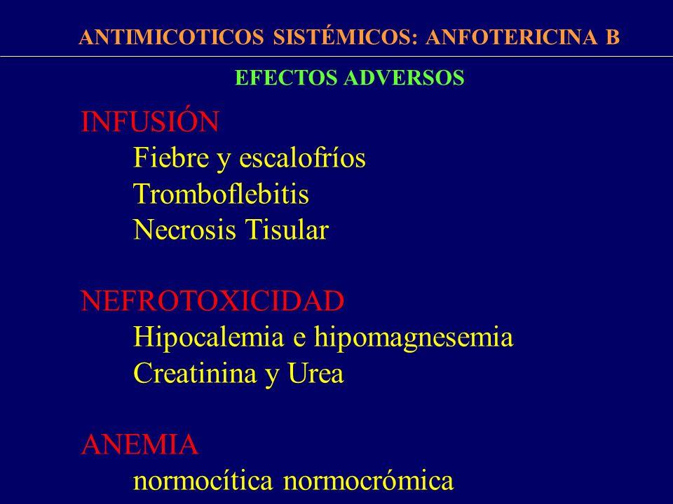 FÁRMACOS ANTIMICÓTICOS ANTIMICOTICOS SISTÉMICOS: ANFOTERICINA B INDICACIONES Candidemia y/o candidiasis invasiva en inmunodeprimidos Meningitis y endocarditis candidiasica Meningitis criptococcica Aspergilosis invasiva Infecciones graves por Histoplasma, Coccidioides y Blastomyces Neutropenia febril Profilaxis de infecciones micoticas en trasplantados de pulmón (en aerosol) Infecciones por zygomicetos y hongos filamentosos