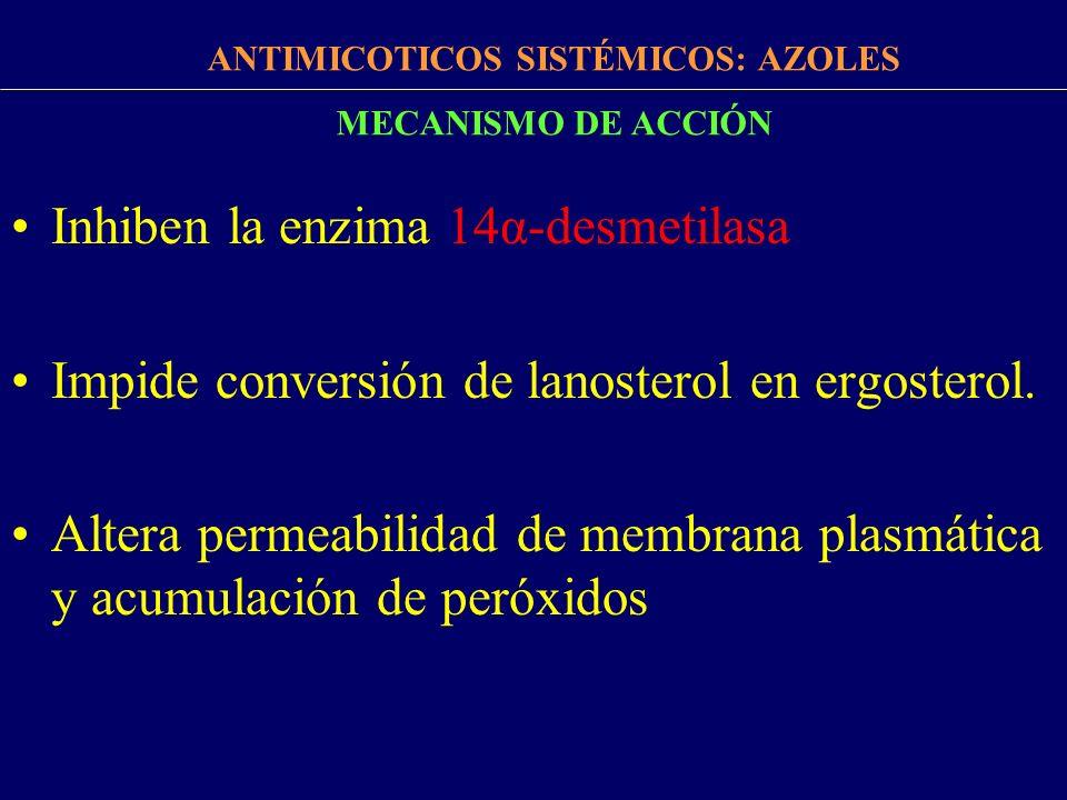 FÁRMACOS ANTIMICÓTICOS ANTIMICOTICOS SISTÉMICOS: AZOLES CLASIFICACIÓN IMIDAZOLES Cetoconazol Miconazol TRIAZOLES Fluconazol Itraconazol Voriconazol Espectro limitadoEspectro mayor Escasa BD oralMayor BD oral Efectos adversos gravesMenos efectos adversos