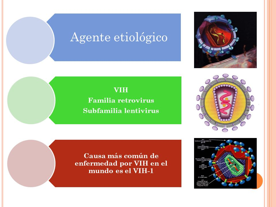 Agente etiológico VIH Familia retrovirus Subfamilia lentivirus Causa más común de enfermedad por VIH en el mundo es el VIH-1