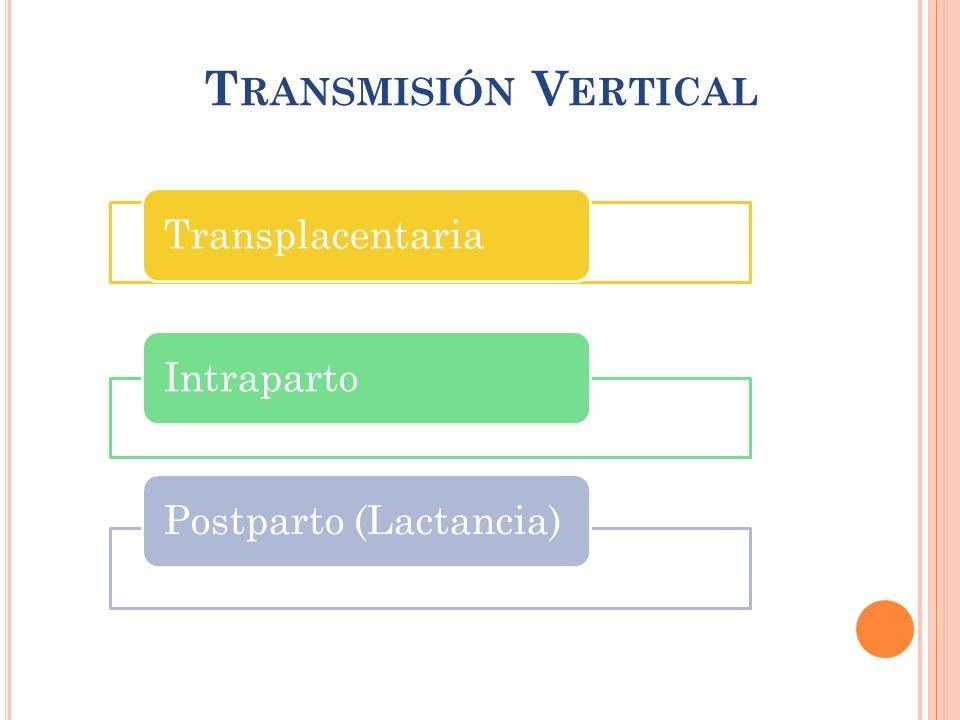 T RANSMISIÓN V ERTICAL TransplacentariaIntrapartoPostparto (Lactancia)